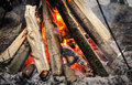 Campfire in a cold winter day Royalty Free Stock Photography
