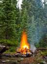 Campfire at wilderness campsite in the rocky mountains colorado Royalty Free Stock Image