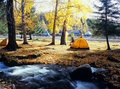 Camping in the autumn forest Royalty Free Stock Images