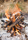 Camping bonfire with ash Royalty Free Stock Photos