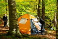 Camping in a forest Royalty Free Stock Photo