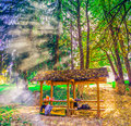 Camping place on mountain Kozara with smoke from camp fire Royalty Free Stock Photo