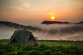 Camping tent with sunshine on hill Stock Photography