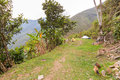Camping tents meadow mountains jungle view, El Choro trek, Bolivia Royalty Free Stock Photo