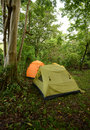 Camping in a tropical location with tents on campsite Stock Photo