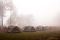 Camping under the sea mist tents on doi pha hom pok national park chiang mai province thailand awesome Royalty Free Stock Photography