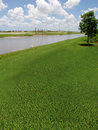 Campo de golf bajo construcción Imagen de archivo