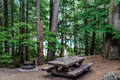 Campsite of of North Cascades National Park
