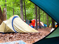 Campsite through tent door looking out at the an open Royalty Free Stock Photos