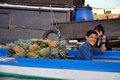 Can tho feb unidentified vietnamese people selling pineapple from boat at the floating market in can tho vietnam on feb with Royalty Free Stock Photography