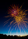 Canada Day Fireworks Over the Treeline Stock Photos