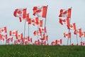 Canada Maple Leaf Flag Royalty Free Stock Photo
