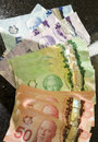 Canadian dollar bank notes currency.