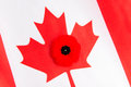 Canadian Flag and Red Poppy Royalty Free Stock Photo