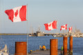 Canadian flags steveston harbor bc flap in a stiff breeze in british columbia canada Royalty Free Stock Photography