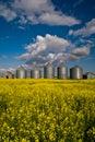 Canadian grain bins Royalty Free Stock Photo
