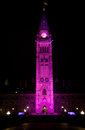 Canadian Peace Tower celebrates Day of the Girl Stock Image