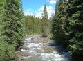 Canadian Rockies stream Royalty Free Stock Photo