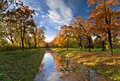 Canal in autumn park with maple tree alley along Royalty Free Stock Image