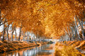 The canal du midi france during autumn Stock Photos