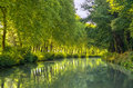 Canal du Midi, sycamore trees reflection in water, France Royalty Free Stock Photo