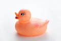 Canard en caoutchouc orange Images libres de droits