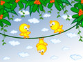 Canaries on branch Royalty Free Stock Photos