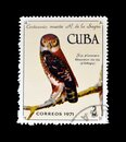Cancelled postage stamp printed by Cuba, that shows Cuban Pygmy Owl