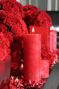 Candle and carnations Royalty Free Stock Photo