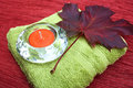 Candle and leaf Royalty Free Stock Photo