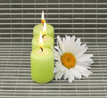Candles and flower Royalty Free Stock Photography
