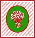 Candy Cane Bunch Royalty Free Stock Photo