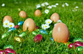 Candy Easter eggs Royalty Free Stock Photo