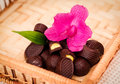 Candy and orchid bunch of delicious sweet chocolates with a pink flower in a wicker basket Stock Photos