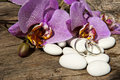 Candy ,wedding rings and orchid Royalty Free Stock Photo