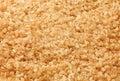 Cane sugar coarse-grained Stock Photos