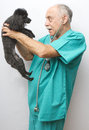Canine Doctor and Patient Royalty Free Stock Image