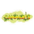 Cannabis and Bong background Royalty Free Stock Photo
