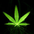 Cannabis leaf fractal artwork computer generated background Royalty Free Stock Photos