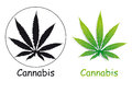 Cannabis leaves silhouette and green Stock Photography