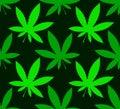 Cannabis marijuana leafs on a dark background, seamless vector p