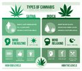 Cannabis sativa and cannabis indica health benefits