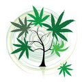 Cannabis tree Royalty Free Stock Photo