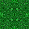 Cannabis weed Royalty Free Stock Photo