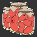 Canned tometoes preserve. Vector concept in doodle and sketch style