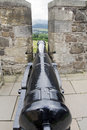 Cannon between battlements of castle black Stock Images