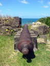 Cannon by the Water Royalty Free Stock Image