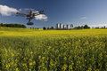 Canola aerial patrol field with farm structures on a background highlighted by a sunset Stock Photography