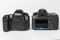 Canon eos dsr and ds dslr megapixels photo of full frame photo camers side by side on a white background Royalty Free Stock Image