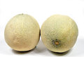 Cantaloupe melon Stock Images